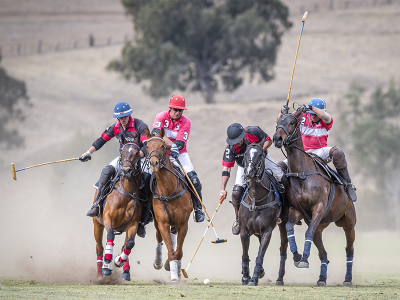 Scone Polo Club - MacIntyre Cup Sunday 2017